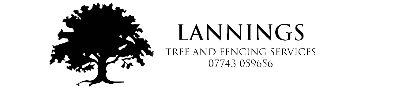 Lannings Tree Surgeons & Fencing